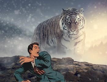 мужчина выжил в лапах тигра притворившись мертвым