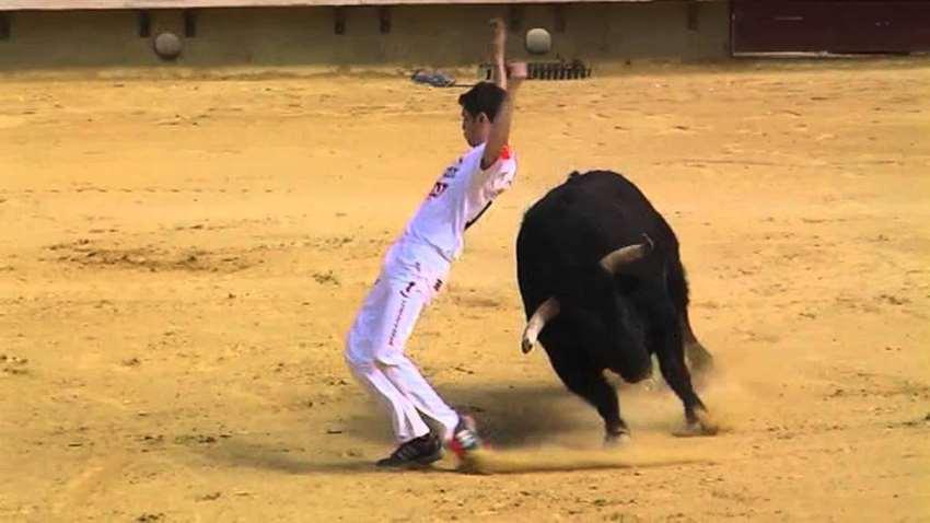 парень уворачивается от быка