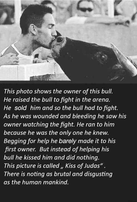 история о поцелуи Иуды