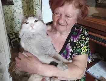 кот Леша и Дина Николаевна