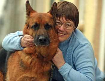собаки обнаружили рак