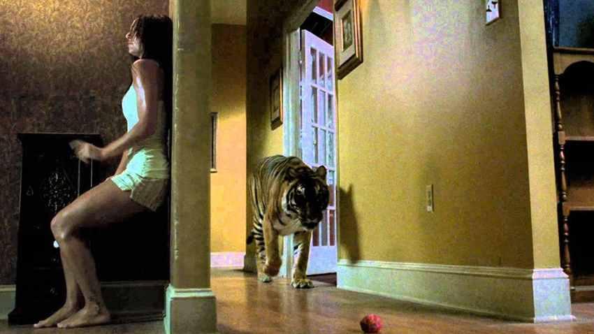тигр в доме фильм