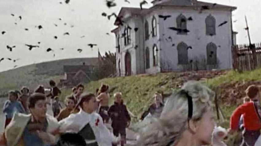фильм про нападения птиц