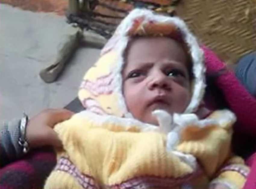 обезьяна убила малыша