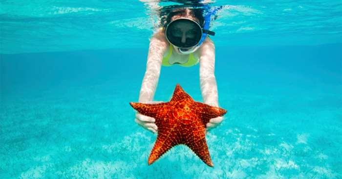 в руках морская звезда