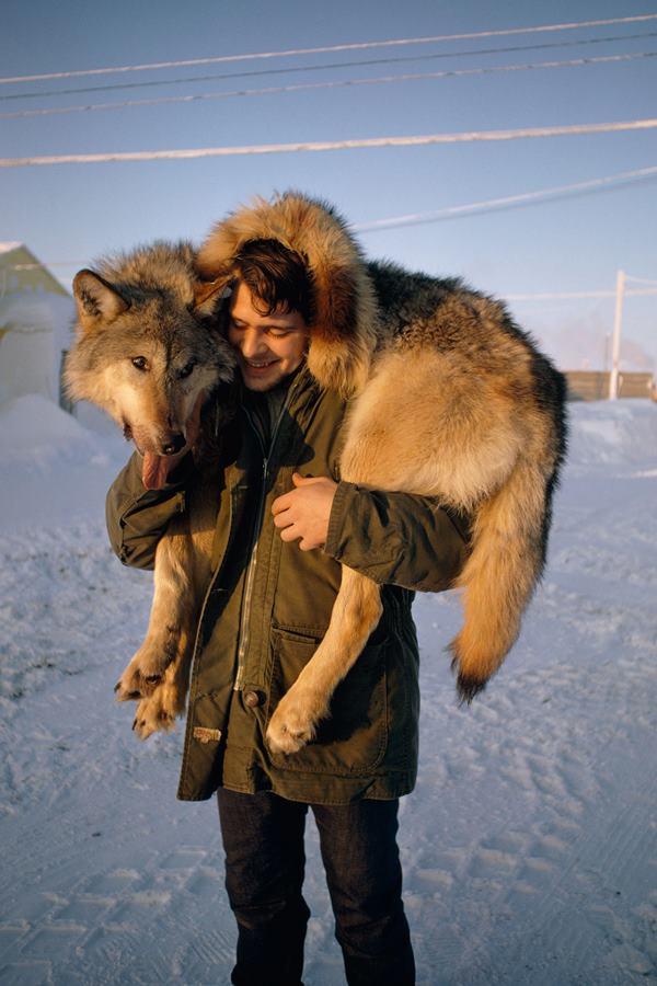 мужчина несет волка